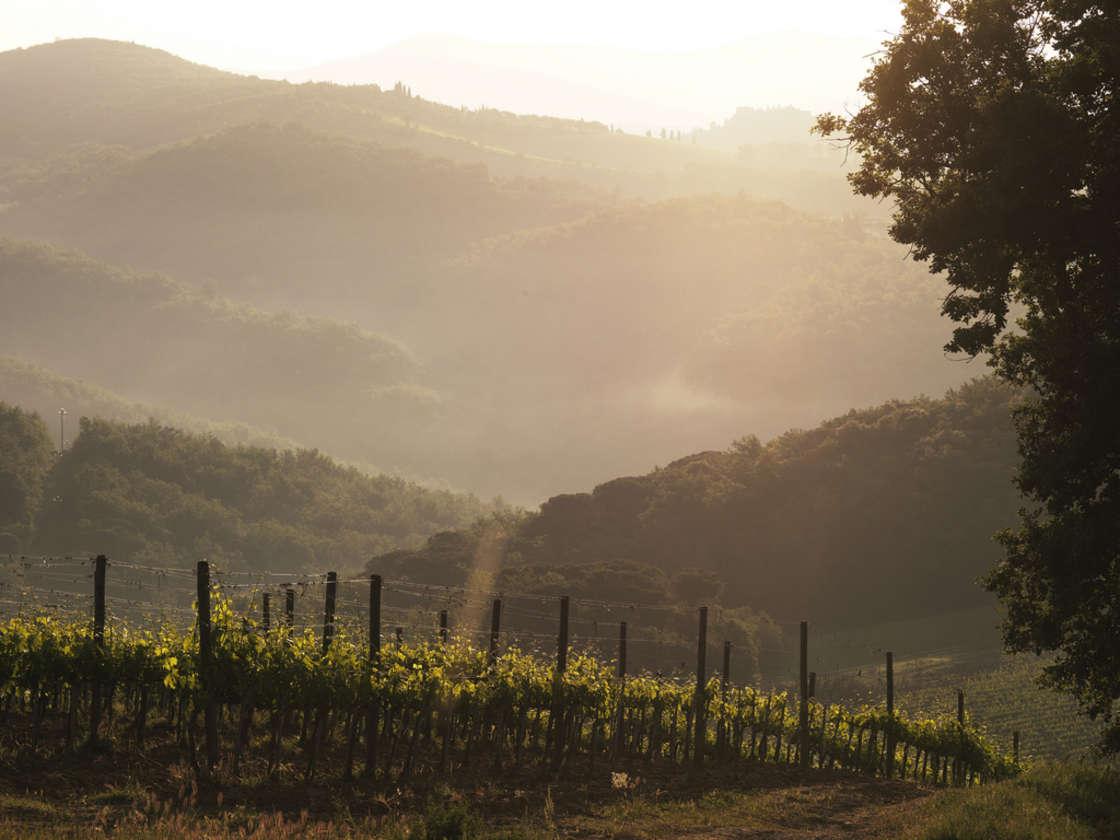 Tuscan Taste Adventure