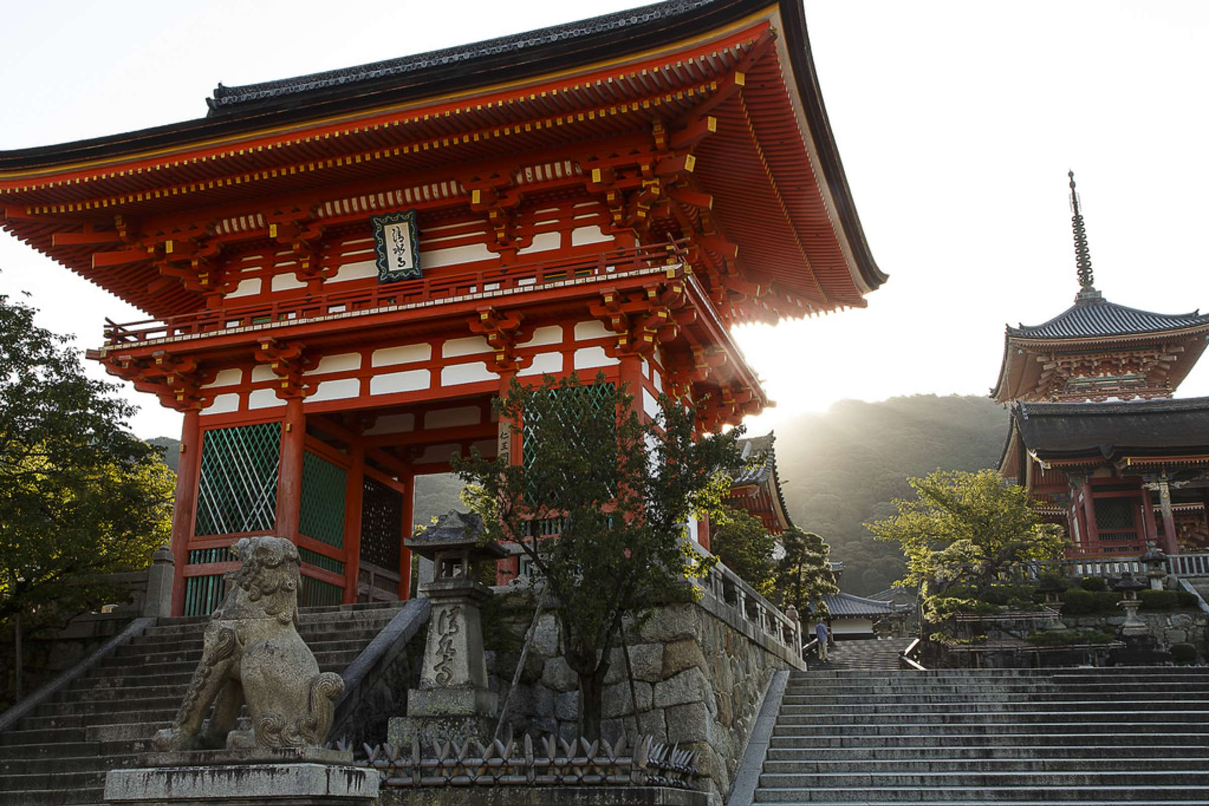 Kyoto Temple Tour - Shinto & Buddhism with Historian - Context