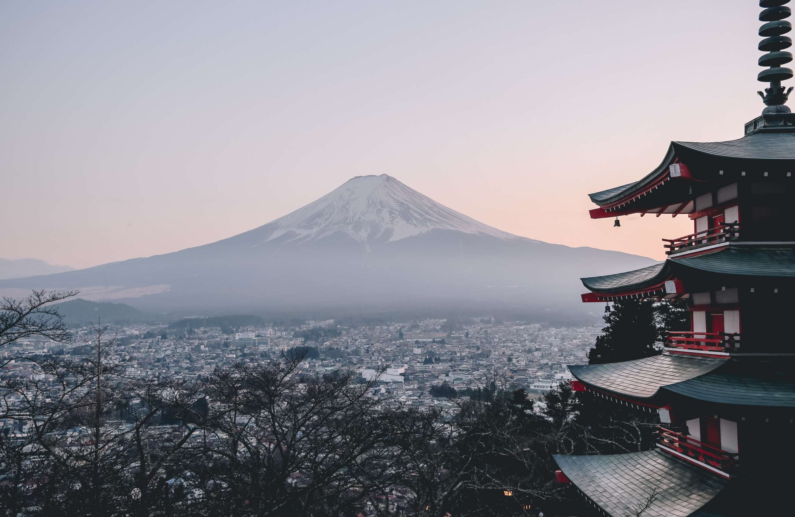 Japan Private and Small Group Tours