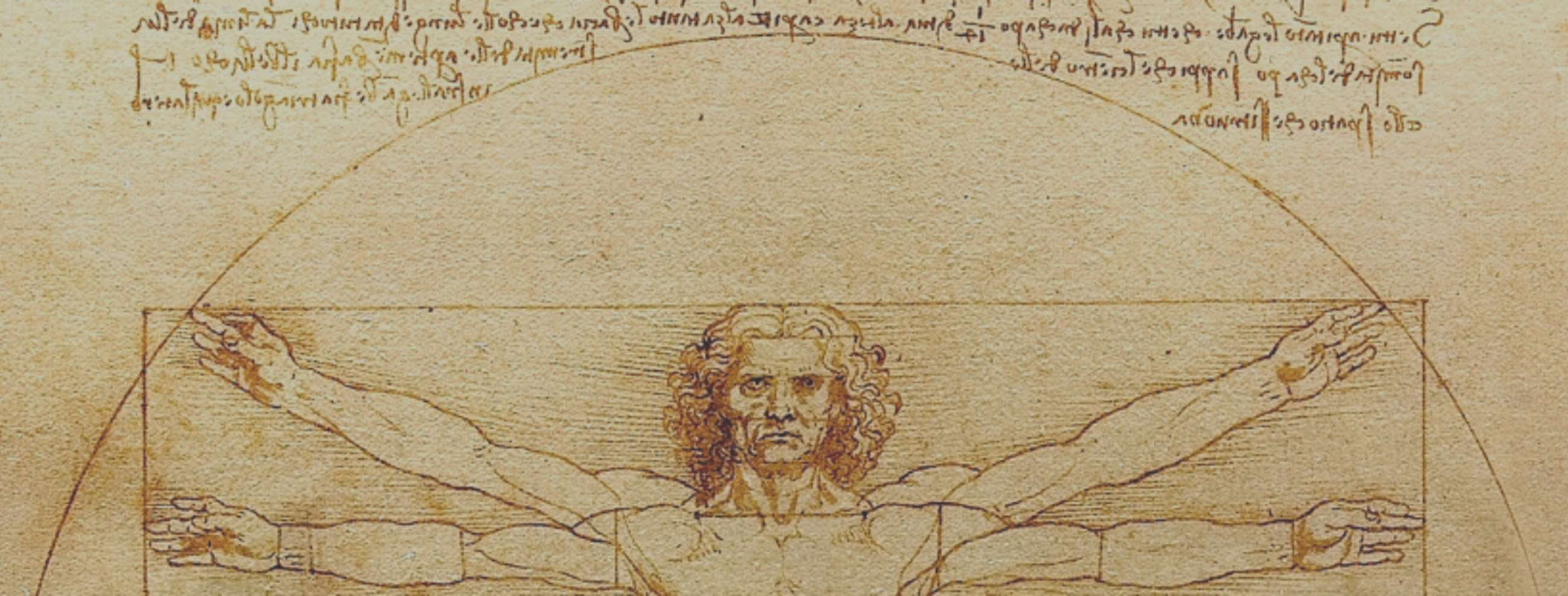 Da Vinci's Vitruvian Man, now on display at the Louvre for a limited time