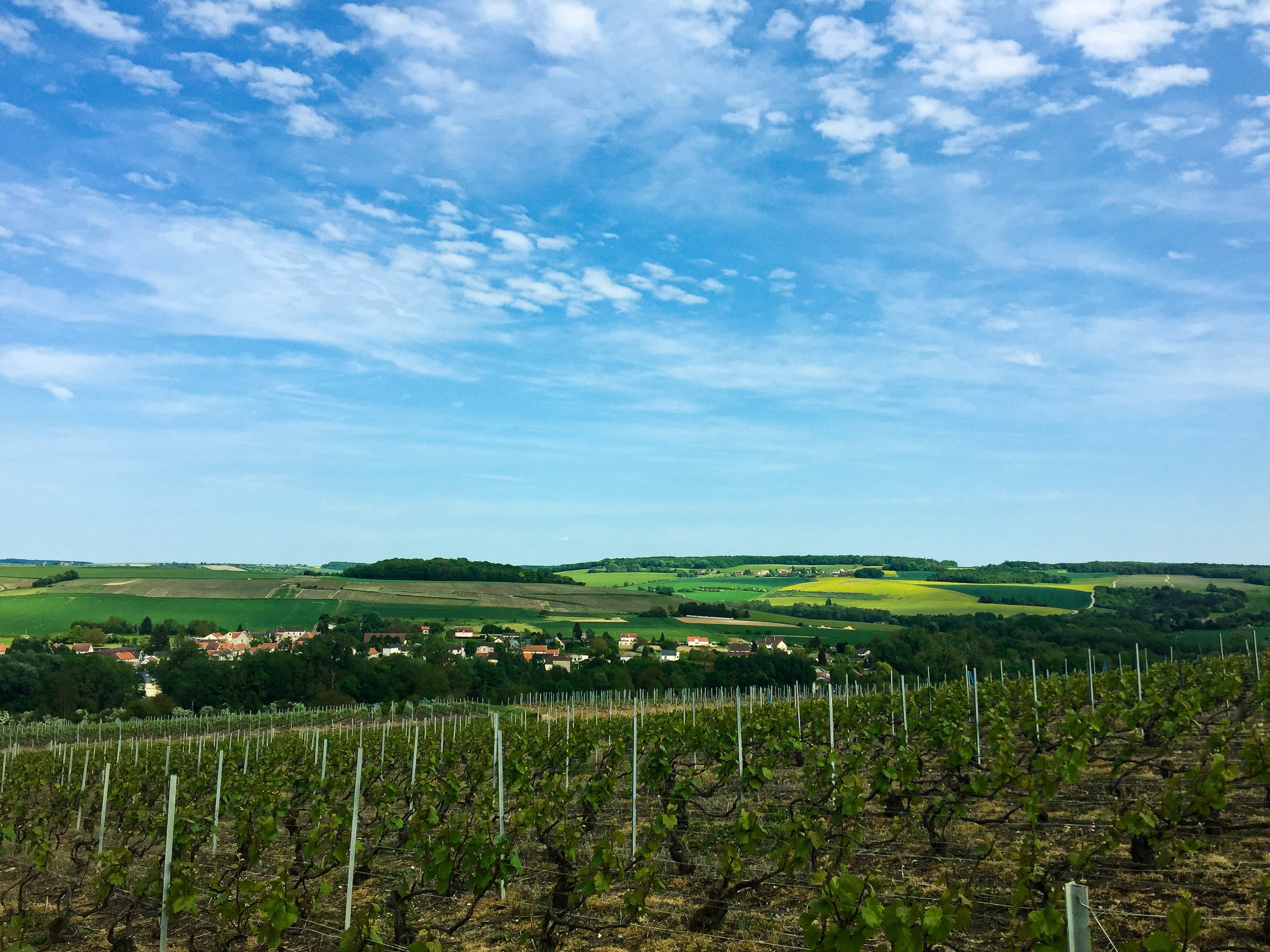 Guide To French Wine Regions Context Travel